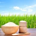 Rice, Noodle & Flour