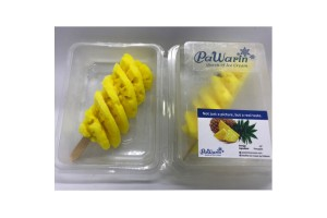 Delectable Tropical Thai Fruit Gelato Ice Cream Bar