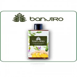 BANJIRO Guava Leaves and Ginger Shampoo