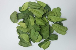Dried Kaffir Lime Leaves,  Quality Grade from Thailand